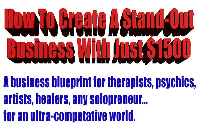 eBook How to Create a Stand Out Business With Just $1500 Australian Edition