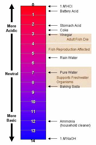 Human blood pH should be slightly alkaline 7.35 - 7.45 for good health.