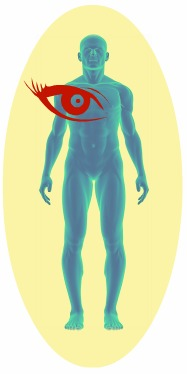 If a person can see your aura they are usually perceiving a small frequency range within a very complex energy field.