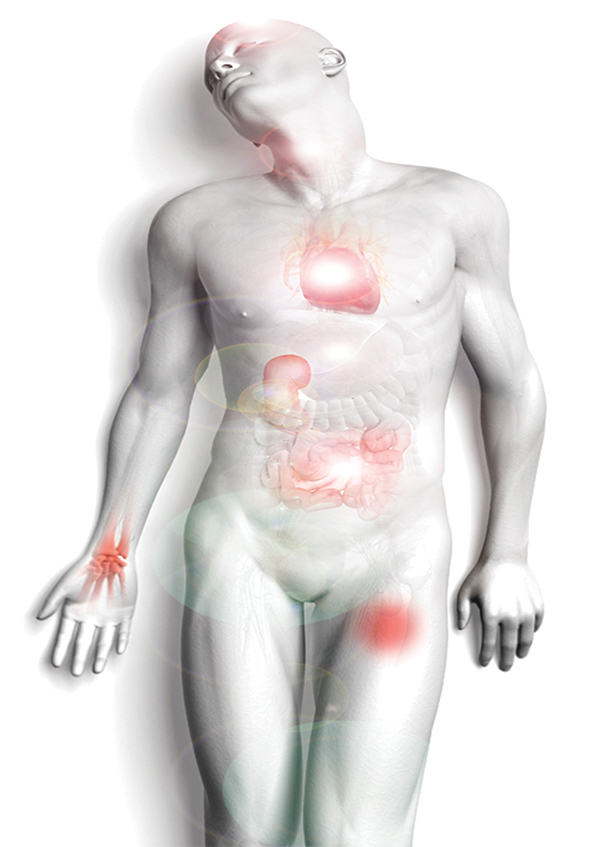 The term Human Biofield is often referred to as the Human Energy Field. Some will also describe it as your Aura but that is not really accurate.